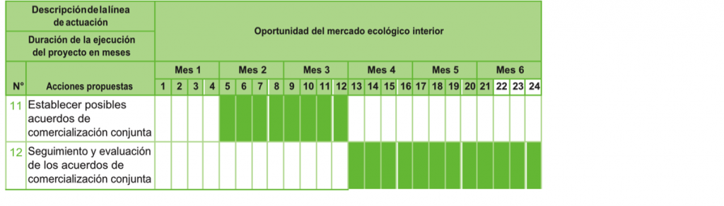 oportunidad-de-mercado-ecologico-interior